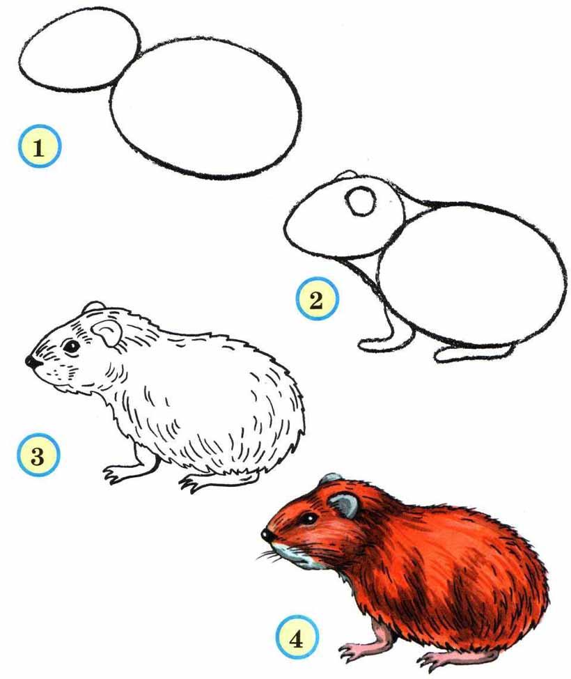 Bir yılan çizmek ve onu daha iyi anlamak nasıl